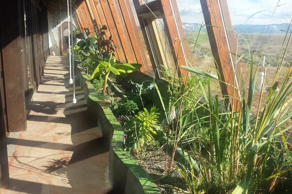 PICURIS EARTHSHIP